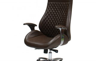 Executive backrest office chair
